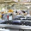 Falcon factory
