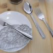 Pinti Inox Ready to Use & Reuse stainless steel cutlery 1