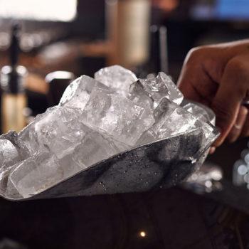 Hoshizaki ice scoop